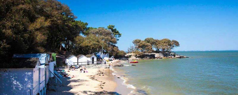 L'ile de Noirmoutier